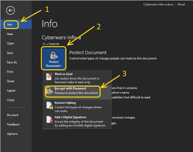 Password-protect-documents-microsoft-office-02