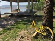 ofo ประกาศยุติให้บริการจักรยานสาธารณะในไทย