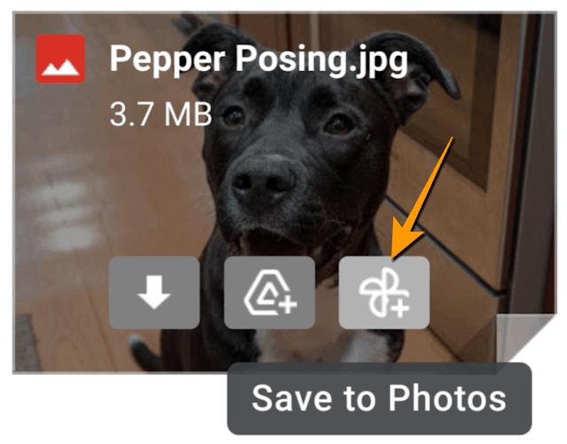 วิธีเซฟรูปจาก Gmail ลงใน Google Photos