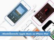 วิธีแชร์เนื้อเพลงใน Apple Music